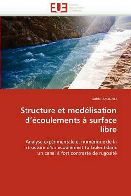 Structure Et Modelisation D Ecoulements a Surface Libre