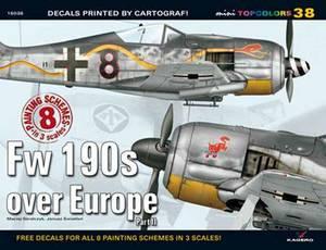 Fw 190s Over Europe Part II