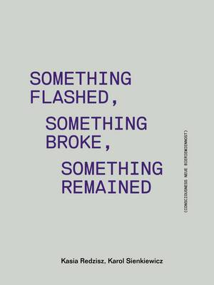Something Flashed, Something Broke, Something Remained - Consciousness Neue Bieremiennost