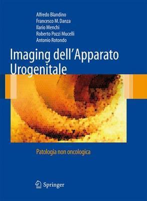 Imaging Dell'apparato Urogenitale: Patologia Non Oncologica