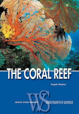Coral Reef (WSG)