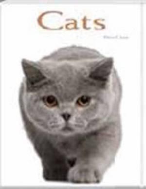 Cats: Pocket Book