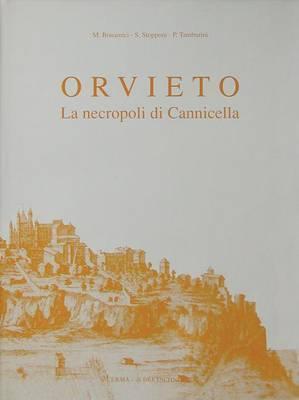 Orvieto La Necropoli Di Cannicella: Scavi Della Fondazione Per Il Museo C. Faina E Della Universita Di Perugia (1977)