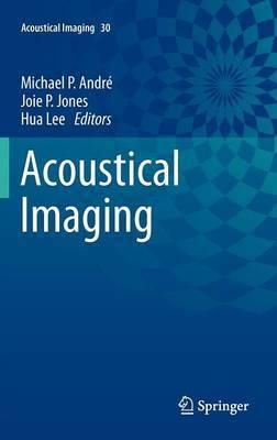 Acoustical Imaging: Vol. 30
