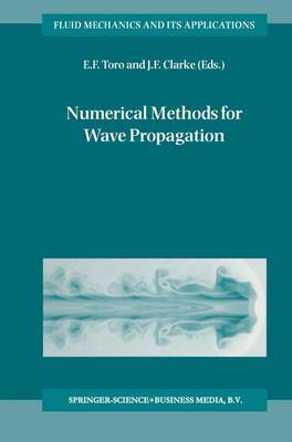 Numerical Methods for Wave Propagation: Selected Contributions from the Workshop held in Manchester, U.K., Containing the Harten Memorial Lecture