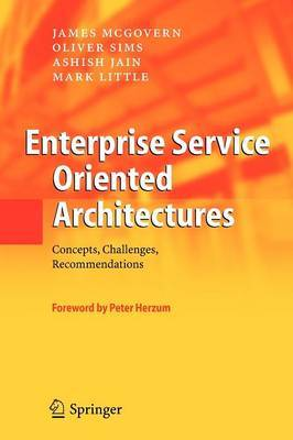 Enterprise Service Oriented Architectures: Concepts, Challenges, Recommendations
