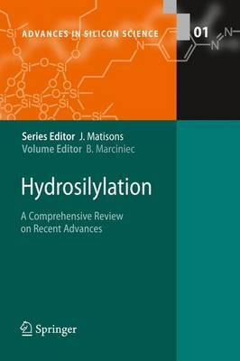 Hydrosilylation: A Comprehensive Review on Recent Advances