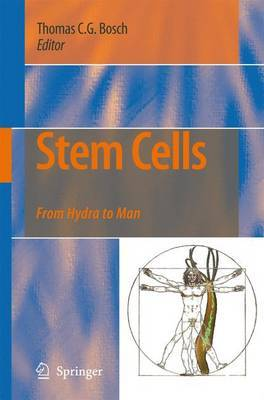 Stem Cells: From Hydra to Man