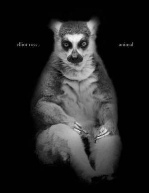 Elliot Ross: Animal