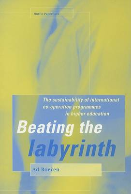 Beating the Labyrinth: The Sustainability of International Co-operation Programmes in Higher Education