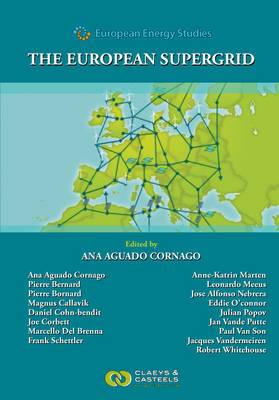 European Energy Studies: The European Supergrid