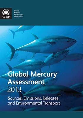 Global Mercury Assessment 2013: Sources, Emissions, Releases and Environmental Transport