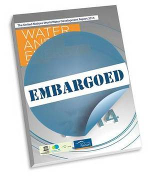 Water and Energy: The United Nations World Water Development Report 2014