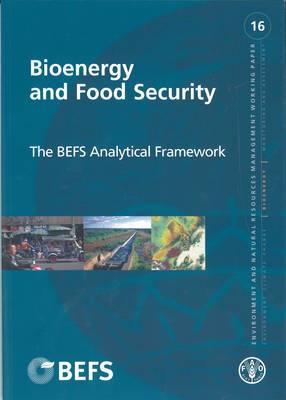 Bioenergy and Food Security: the BEFS Analytical Framework