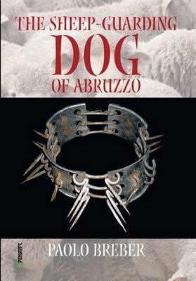 The Sheep-guarding Dog of Abruzzo
