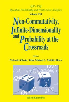 Non-Commutativity, Infinite-Dimensionality and Probability at the Crossroads: Proceedings of the RIMS Workshop on Infinite-Dimensional Analysis and Quantum Probability