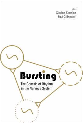 Bursting: The Genesis of Rhythm in the Nervous System