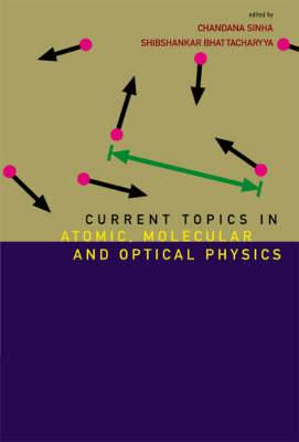 Current Topics In Atomic, Molecular And Optical Physics: Invited Lectures Of Tc-2005