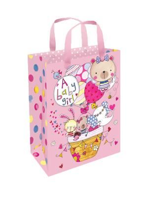 Rachel Ellen Small Portrait Gift Bag - Baby Girl