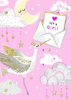 Rachel Ellen Baby Girl Stork Card (PIC7)