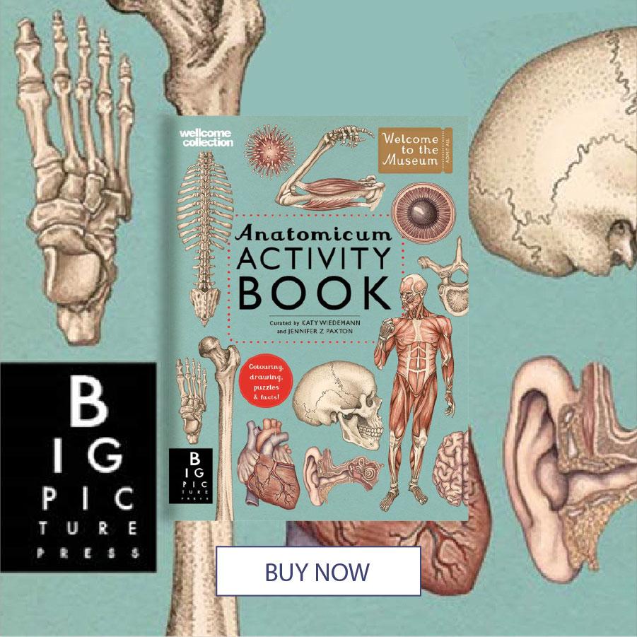 April 20 CNFHOTM anatomicum-activity-book 900x900