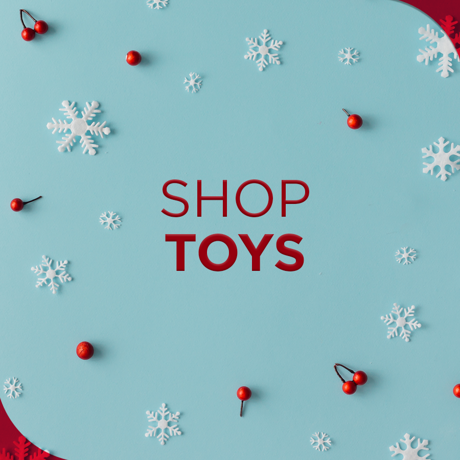 Christmas - shop toys 900x900