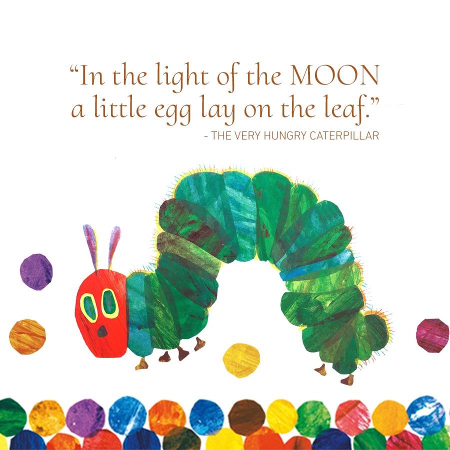 Children's Popular Authors Blocks Hungry Caterpillar 900x900