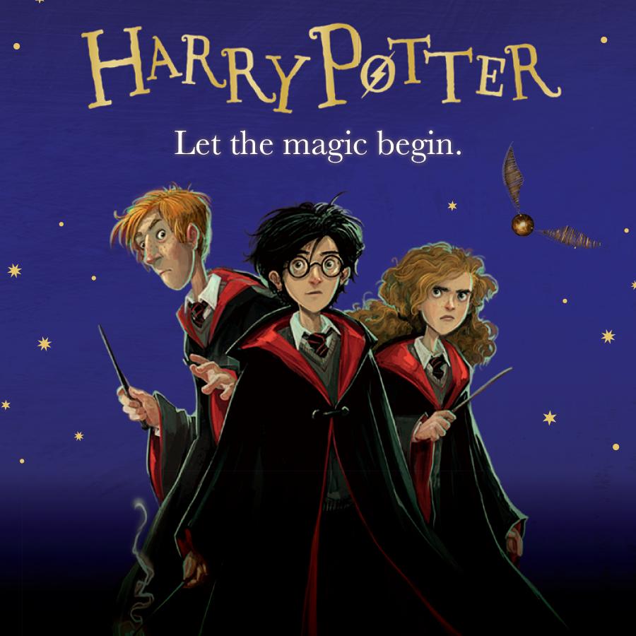 Children's Popular Authors Blocks Harry Potter 900x900