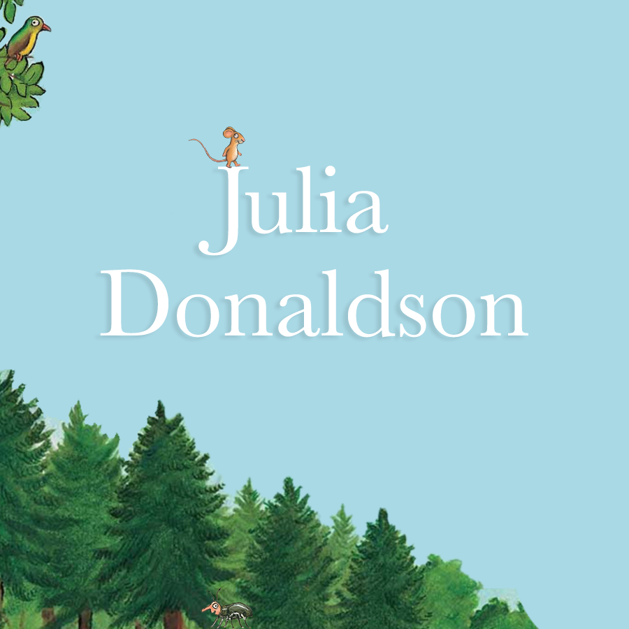 Children's Popular Authors Blocks Julia Donaldson 900x900